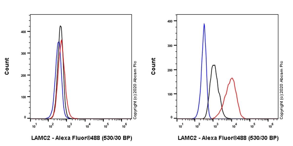 Flow Cytometry - Anti-LAMC2 antibody [EPR23654-127] (ab274376)