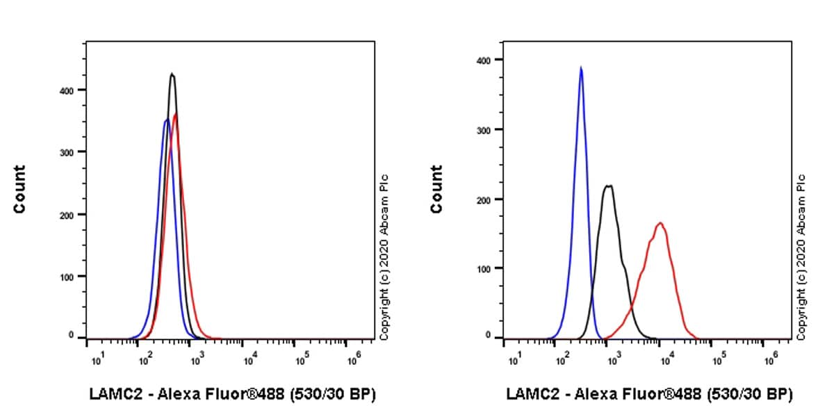 Flow Cytometry - Anti-LAMC2 antibody [EPR23654-127] - BSA and Azide free (ab274384)