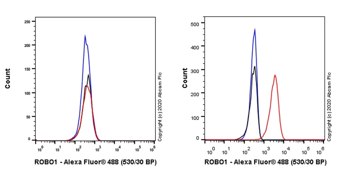 Flow Cytometry - Anti-Robo1 antibody [EPR23699-159] - BSA and Azide free (ab274385)