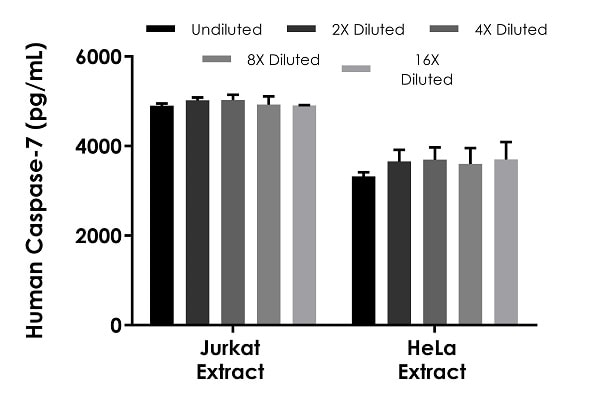 Interpolated concentrations of native Caspase-7 in human Jurkat and HeLa cell based on 80 µg/mL and 200 µg/mL extract loads, respectively.