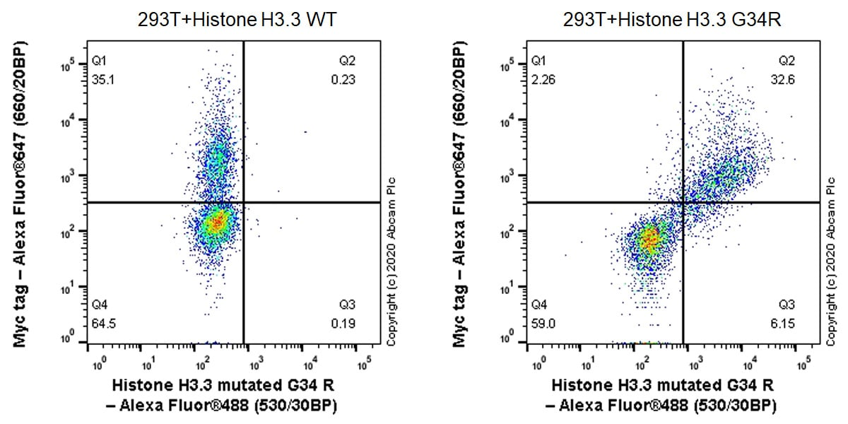 Flow Cytometry - Anti-Histone H3.3 (mutated G34R) antibody [EPR23519-91] - ChIP Grade