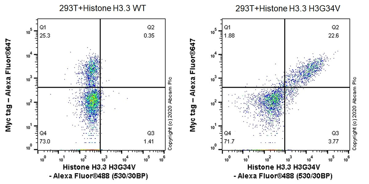 Flow Cytometry - Anti-Histone H3.3 (mutated G34V) antibody [EPR23520-5] - ChIP Grade