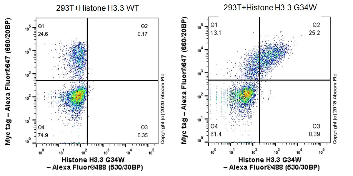 Flow Cytometry - Anti-Histone H3.3 (mutated G34W) antibody [EPR23581-39] - ChIP Grade