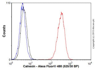 Flow Cytometry - Anti-Calnexin antibody [EPR3633(2)] - ER Membrane Marker