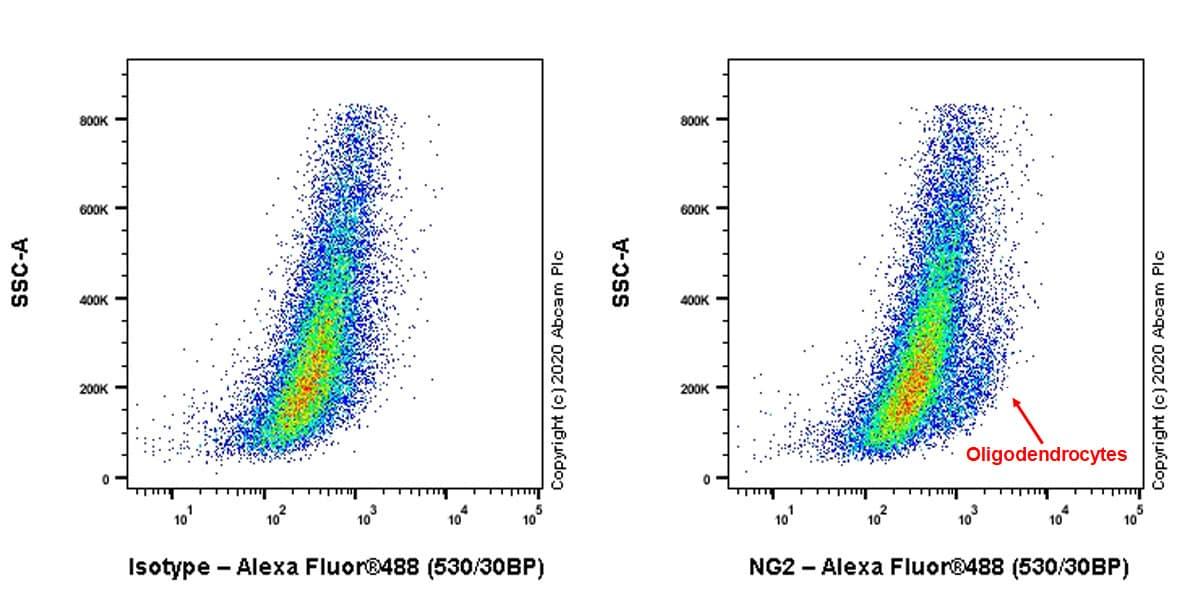 Flow Cytometry - Anti-NG2 antibody [EPR23976-145] - BSA and Azide free (ab275038)