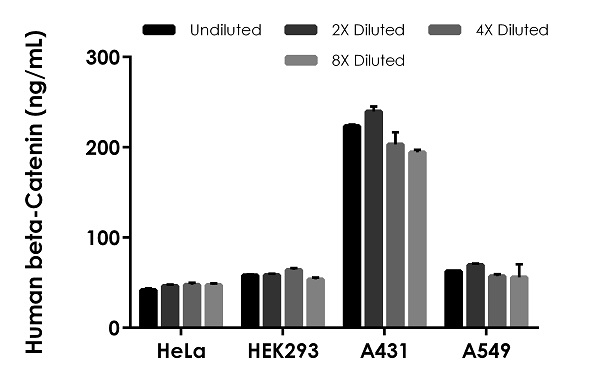 Interpolated concentrations of native Human beta-Catenin in HeLa cell extract, HEK293 cell extract, A431 cell extract, and A549 cell extract based on a 400 µg/mL extract load.