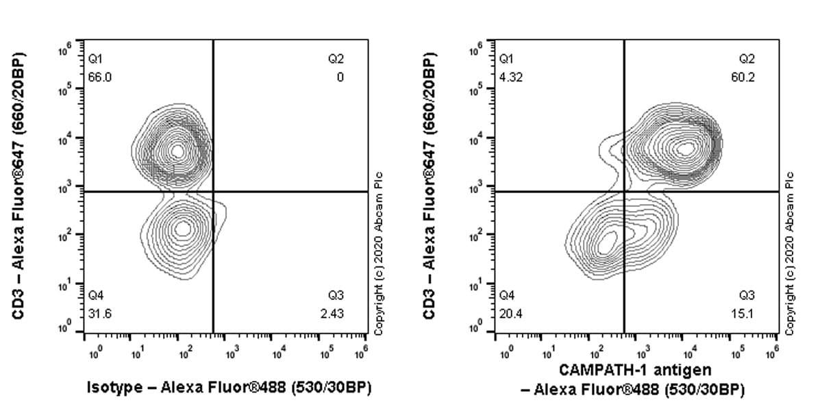 Flow Cytometry - Anti-CD52 antibody [EPR23855-41] - BSA and Azide free (ab275257)