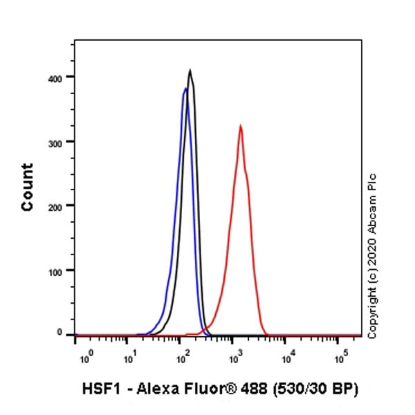 Flow Cytometry - Anti-HSF1 antibody [EPR23673-128] - BSA and Azide free (ab275382)