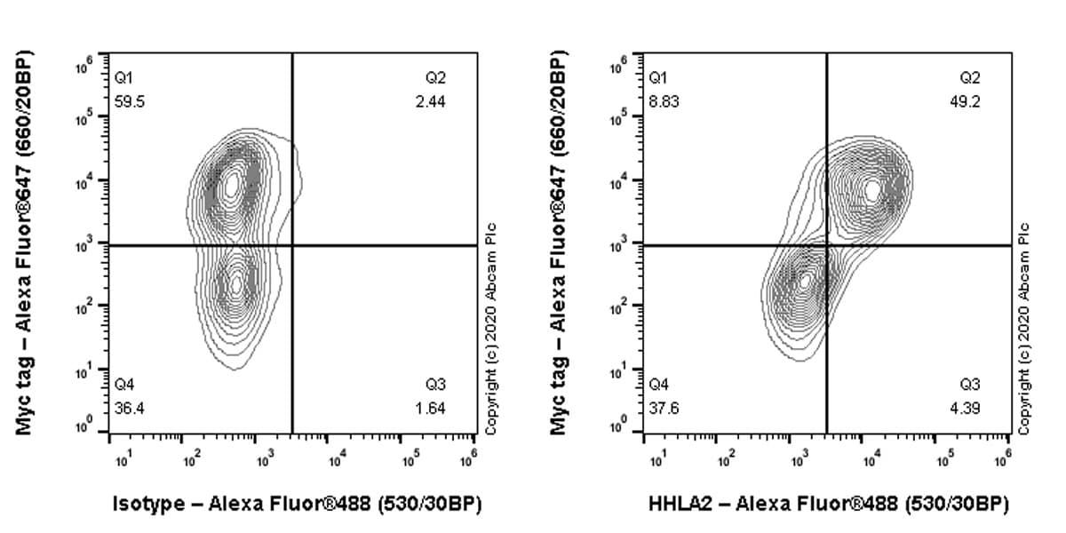 Flow Cytometry - Anti-HHLA2 antibody [EPR23563-120] - BSA and Azide free (ab275386)