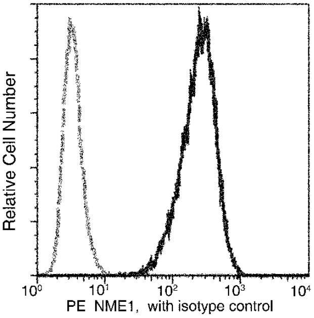 Flow Cytometry - Anti-NM23A antibody [01] (PE) (ab275709)