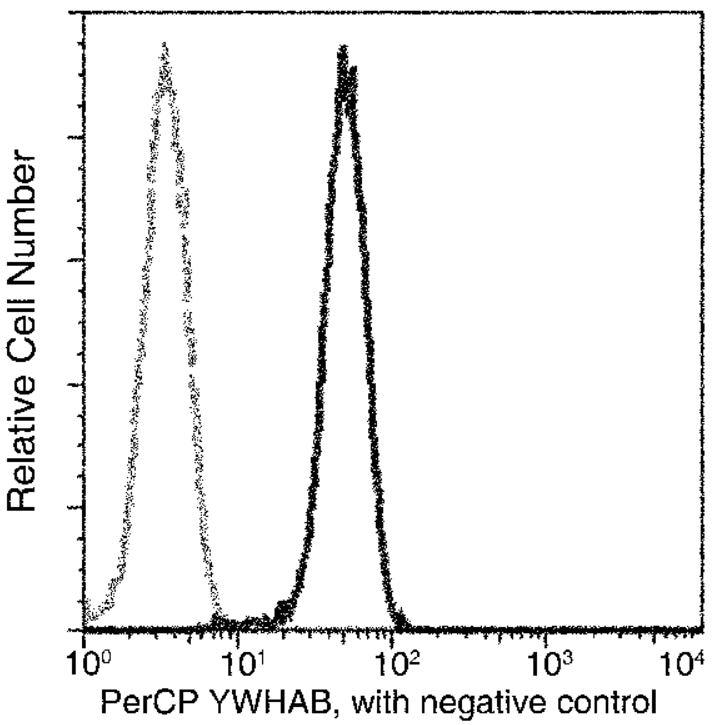 Flow Cytometry - Anti-14-3-3 beta antibody [03] (PerCP) (ab275734)