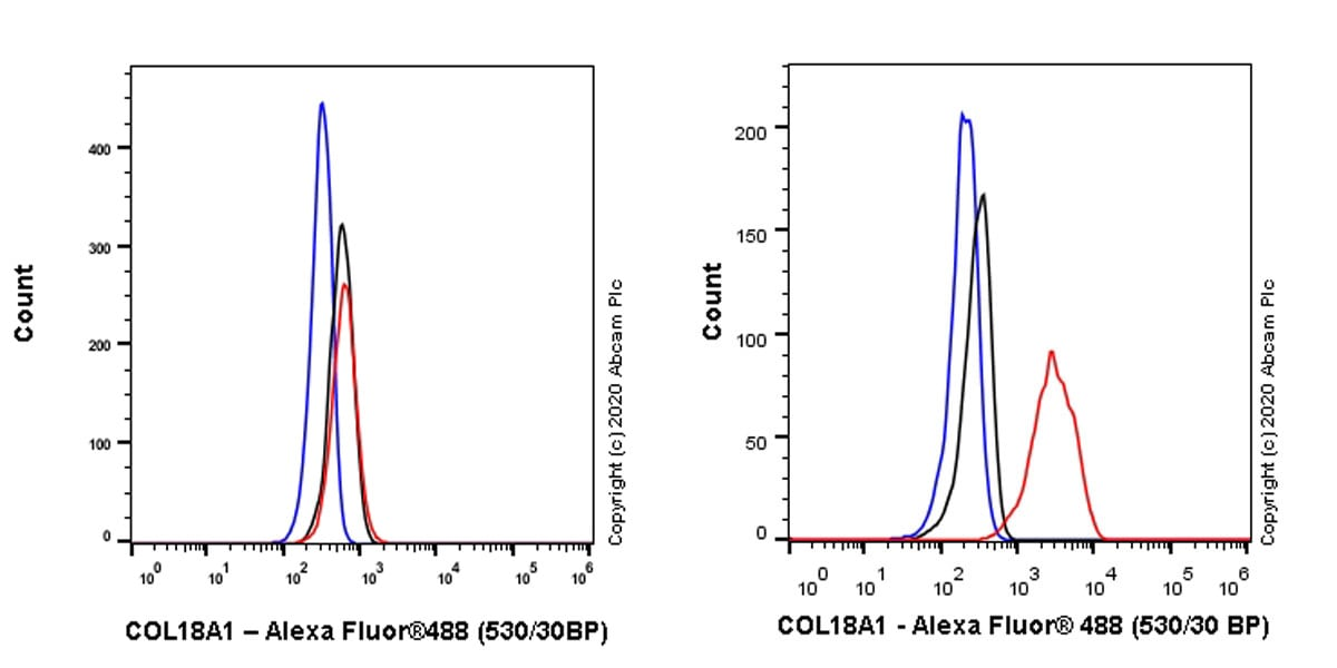 Flow Cytometry - Anti-COL18A1 antibody [EPR23481-21] - BSA and Azide free (ab275750)