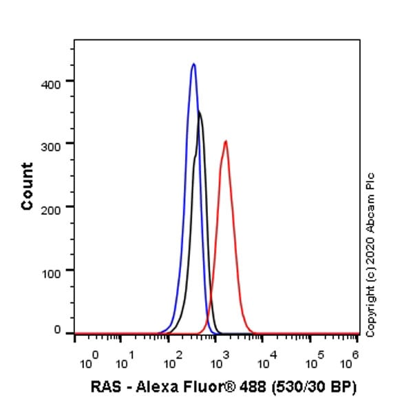 Flow Cytometry - Anti-Ras antibody [EPR23474-20] (ab275875)