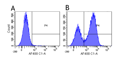 Flow Cytometry - Anti-Integrin alpha 4/CD49D antibody [Natalizumab] (ab275979)