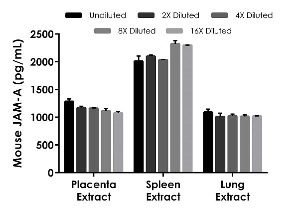 Interpolated concentrations of native JAM-A in mouse placenta based on a 25 µg/mL extract load, lung based on a 25 µg/mL extract load, and spleen based on a 50 µg/mL extract load.