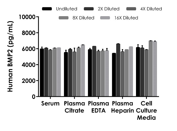 . Interpolated concentrations of spike BMP2 in human serum, plasma and cell culture media samples.