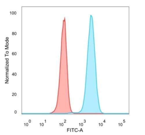 Flow Cytometry - Anti-CREB5 antibody [PCRP-CREB5-1G8] - BSA and Azide free (ab277114)