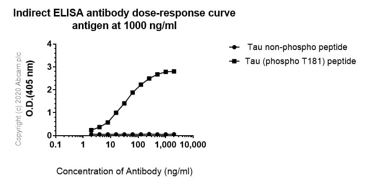 ELISA - Anti-Tau (phospho T181) antibody [EPR23506-107] - BSA and Azide free (ab277644)