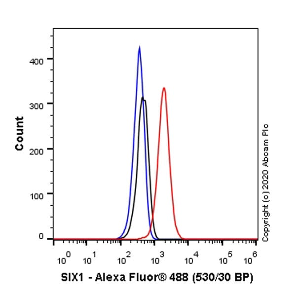 Flow Cytometry - Anti-SIX1 + SIX6 + Six3 + SIX2 antibody [EPR23608-2] - BSA and Azide free (ab277949)