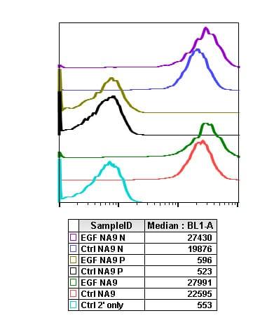 Flow Cytometry - Anti-PTEN (phospho S380) antibody [PTENS380-NA9] (ab278557)