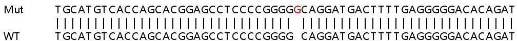 Sanger Sequencing - Human ICAM1 knockout HeLa cell pellet (ab278920)