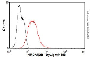 Flow Cytometry - Anti-NMDAR2B antibody [NR2B] (ab28373)