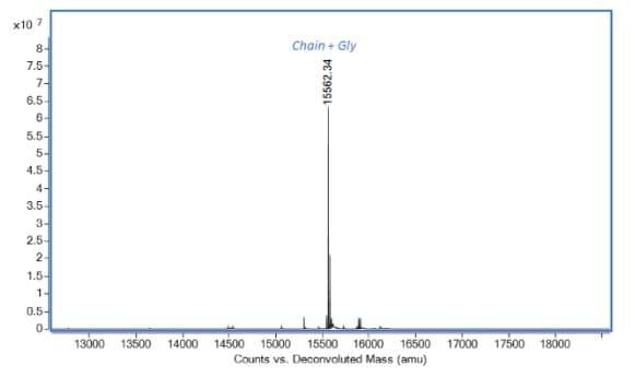 Mass Spectrometry - Recombinant Rat Interferon gamma protein (ab280340)
