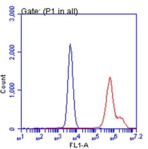 Flow Cytometry - Anti-SARS-CoV-2 Spike Glycoprotein S1 antibody [HL6] - BSA and Azide free (ab281311)