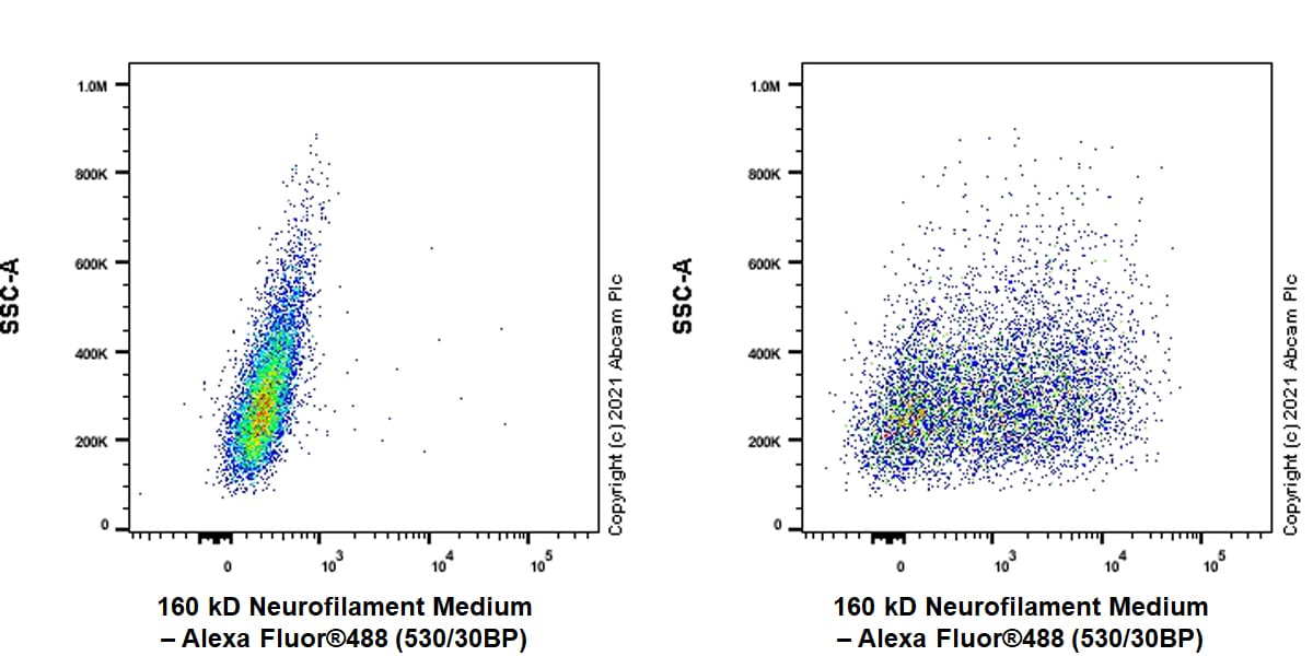 Flow Cytometry - Anti-160 kD Neurofilament Medium antibody [EPR23510-76] - BSA and Azide free (ab281830)