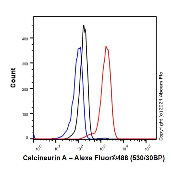 Flow Cytometry - Anti-Calcineurin A antibody [EPR24997-22] (ab282104)