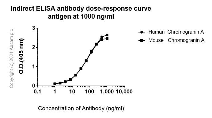 ELISA - Anti-Chromogranin A antibody [RM1025] - BSA and Azide free (ab283286)