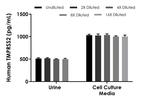 Interpolated concentrations of spike TMPRSS2 in 50% urine and 100% cell culture supernatant samples