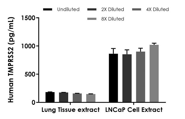 Interpolated concentrations of native TMPRSS2 in human lung tissue extract and LNCaP cell extract based on 2,000 µg/mL and 300 µg/ml extract loads, respectively.