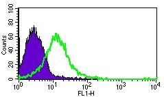 Flow Cytometry - Anti-beta 1 Adrenergic Receptor antibody (ab3442)