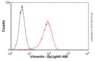 Flow Cytometry - Anti-Vimentin antibody [VI-RE/1] (ab3974)