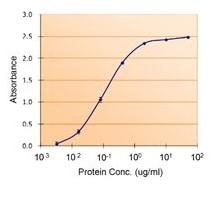 Sandwich ELISA - Anti-PAI1 antibody (ab31280)