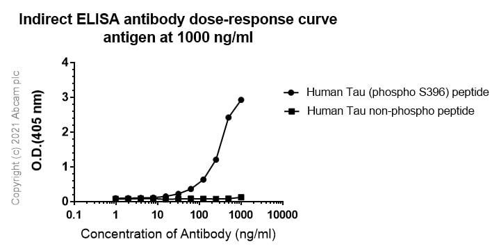 ELISA - Anti-Tau (phospho S396) antibody [E178] (ab32057)