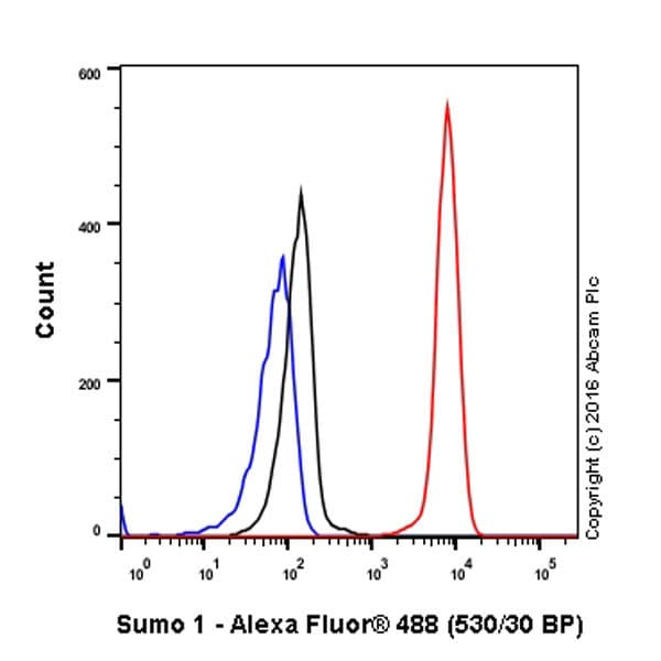 Flow Cytometry - Anti-Sumo 1 antibody [Y299] (ab32058)