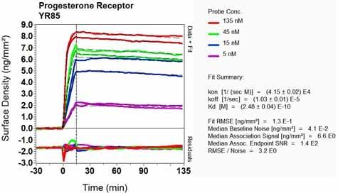 Other - Anti-Progesterone Receptor antibody [YR85] (ab32085)
