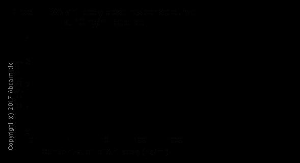 ELISA - Anti-JAK2 (phospho Y1007 + Y1008) antibody [E132] (ab32101)