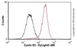 Flow Cytometry - Anti-Cyclin E2 antibody [E142] (ab32103)