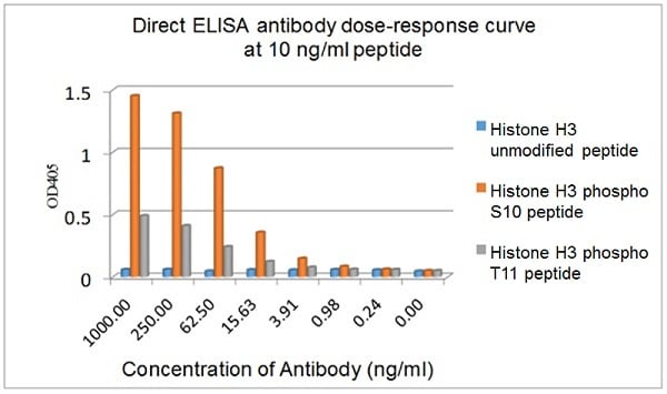 ELISA - Anti-Histone H3 (phospho S10 + T11) antibody [E173] (ab32107)