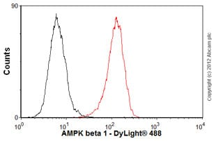 Flow Cytometry - Anti-AMPK beta 1 antibody [Y367] (ab32112)