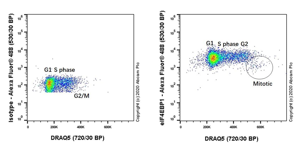 Flow Cytometry (Intracellular) - Anti-eIF4EBP1 antibody [Y330] (ab32130)