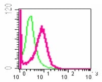 Flow Cytometry - Anti-EGFR antibody [E234] (ab32198)