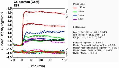 OI-RD Scanning - Anti-Caldesmon/CDM antibody [E89] (ab32330)