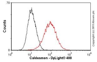 Flow Cytometry - Anti-Caldesmon/CDM antibody [E89] (ab32330)