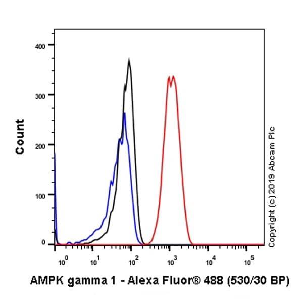 Flow Cytometry - Anti-AMPK gamma 1 antibody [Y308] (ab32508)
