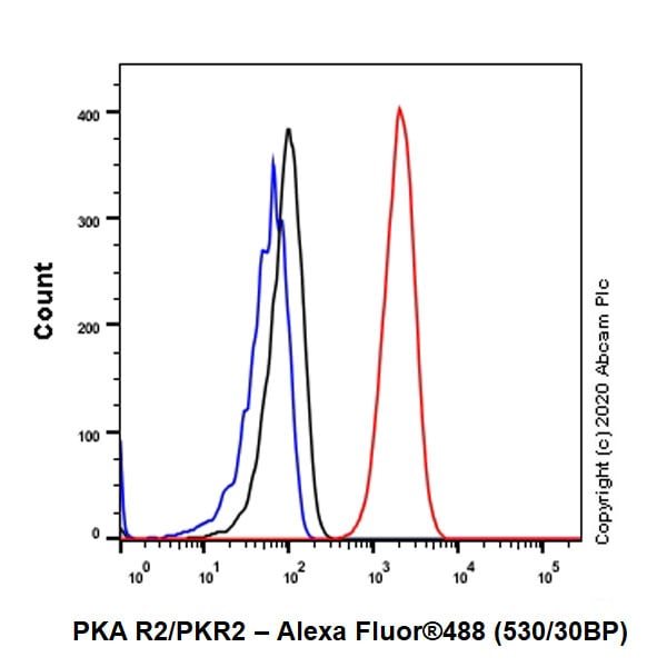 Flow Cytometry - Anti-PKA R2/PKR2 antibody [Y116] (ab32514)