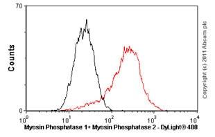 Flow Cytometry - Anti-Myosin Phosphatase 1+Myosin Phosphatase 2 antibody [YE336] (ab32519)